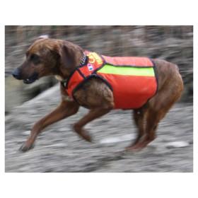 Giacchetto di protezione per cani da caccia al cinghiale - CANICOM