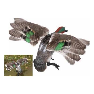 Alzavola maschio ali girevoli - SAG NATURE