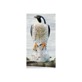 Falco pellegrino 7625 - SAG NATURE