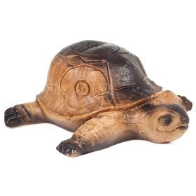 Sagoma 3D Tartaruga - A.A.