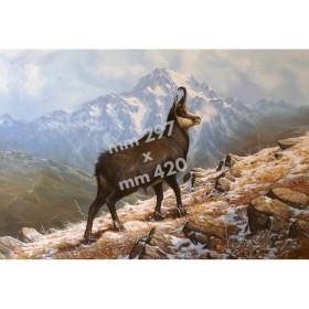 Stampa da caccia da quadro di R. Bianchi - UDB