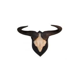 Trofeo di Blue Wildebeest Gnu - UOMINI DEI BOSCHI