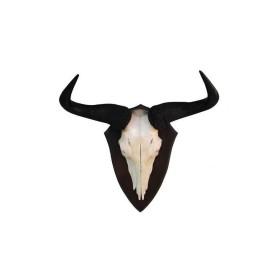 Trofeo di Blu Wildebeest Gnu 02 - UOMINI DEI BOSCHI