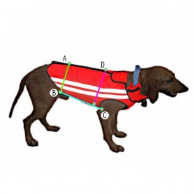 Corpetto protettivo per cani - CALZATURIFICIO LAURETTA